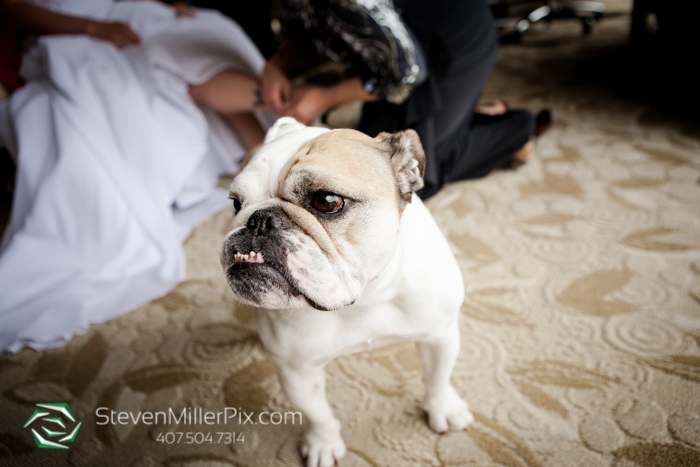 hyatt_regency_grand_cypress_weddings_orlando_steven_miller_photography_0007
