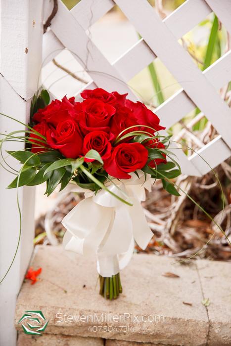 Paradise Cove Wedding Photographers | Orlando Wedding Photographer