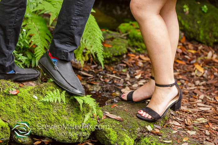Engagement Photos at Bok Tower Gardens