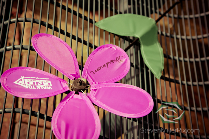steven_miller_photography_walk_to_end_alzheimers_orlando_events_0011