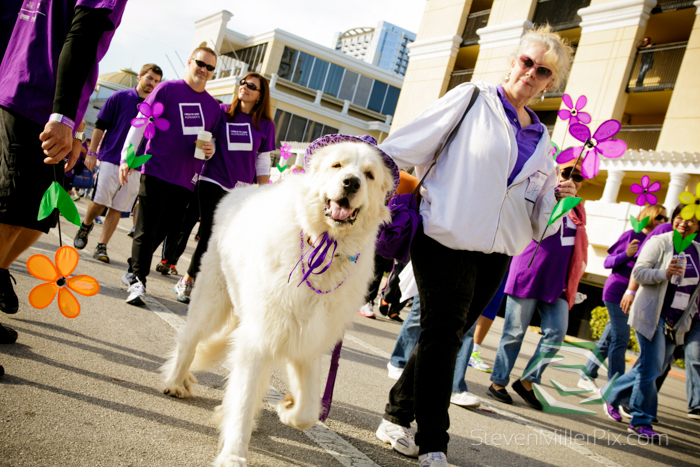 steven_miller_photography_walk_to_end_alzheimers_orlando_events_0016