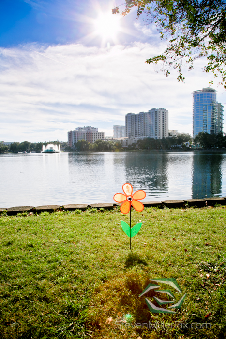 steven_miller_photography_walk_to_end_alzheimers_orlando_events_0017