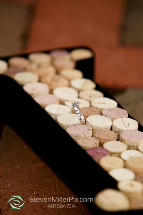 orlando_wedding_photographers_engagement_sessions_0015