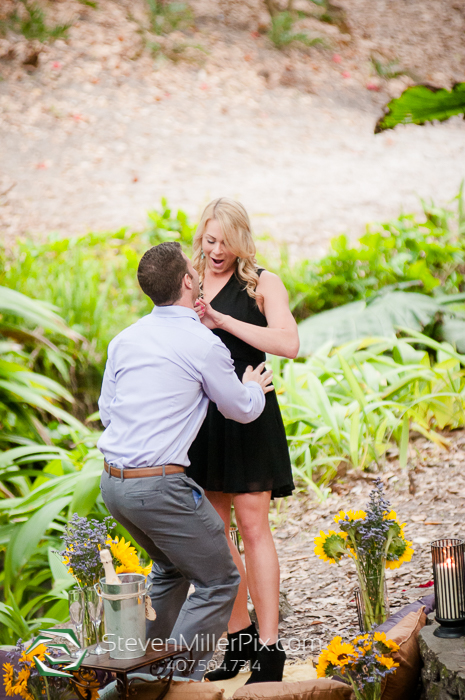 Orlando Surprise Proposal Photographers | Nicole Squared Events