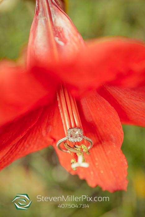 Engagement Photos at Bok Tower Gardens