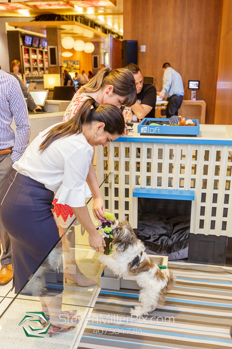 Pet Alliance Aloft Orlando Downtown Events