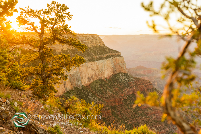 Arizona Engagement Grand Canyon Photographer