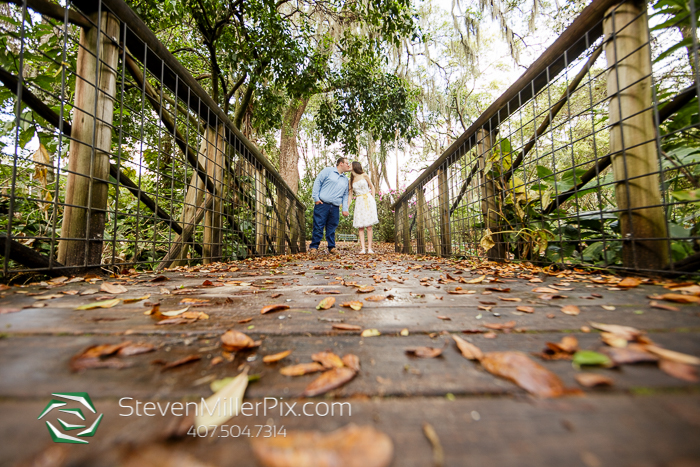 Orlando Mini Session Photographers
