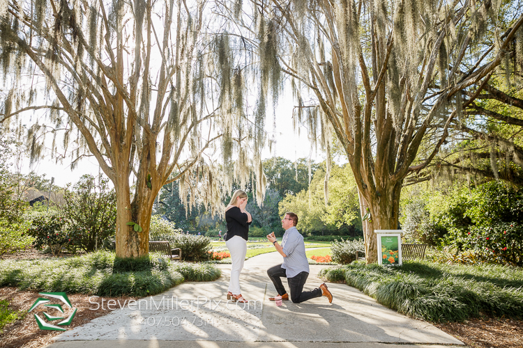 Leu Gardens Surprise Proposal