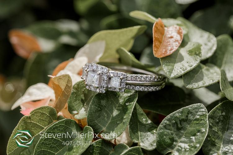 Engagement Photos in Mennello Museum Orlando
